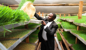 Farmer Training | Juhudi Kilimo